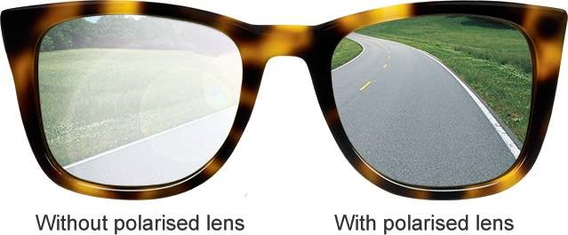 Polaroid Sunglasses Vs Ray Ban  difference between polarized vs non polarized sunglasses
